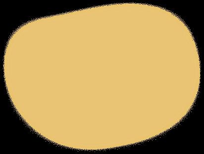 shape 9